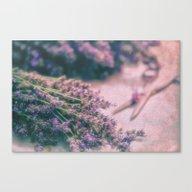 Lavender Revival Canvas Print