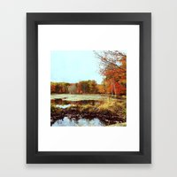 Beaver Pond Framed Art Print