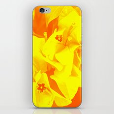 Ali orange iPhone & iPod Skin