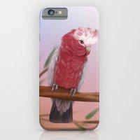 Galah iPhone 6 Slim Case