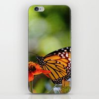 Dreams In Color And Ligh… iPhone & iPod Skin