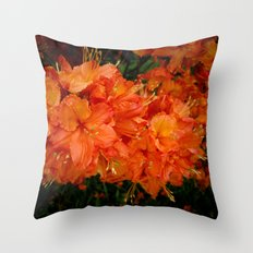 Give me an Orange, Julius Throw Pillow