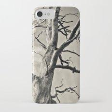 Majesty iPhone 7 Slim Case