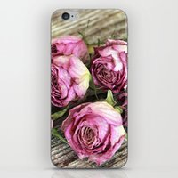 Dried Pink Roses iPhone & iPod Skin
