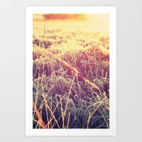 Frosty Sunrise Art Print