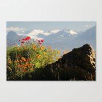 Springtime In The Mounta… Canvas Print