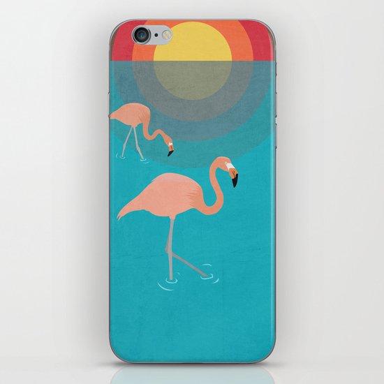 Flamingos iPhone & iPod Skin