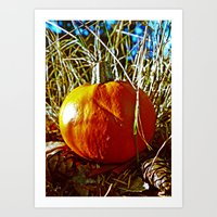 Art Print featuring Little orange pumpkin by Vorona Photography