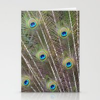 Pretty Peacock Feathers Stationery Cards
