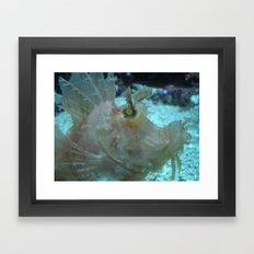 Crazy Fish Framed Art Print