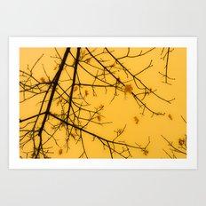 November Leaves Art Print