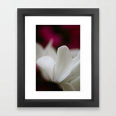 So Delicate  Framed Art Print
