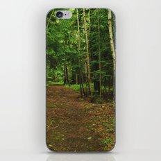 Pathfinder I iPhone & iPod Skin