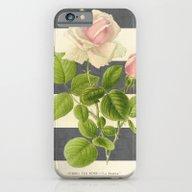 Botanical Stripes I - Gr… iPhone 6 Slim Case