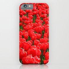 Red tulips iPhone 6s Slim Case