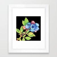 Wild Maine Blueberries Framed Art Print