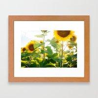 Good Day Sunshine Framed Art Print