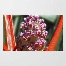 Succulent Blossom I Rug
