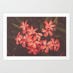 Coral Tales Art Print