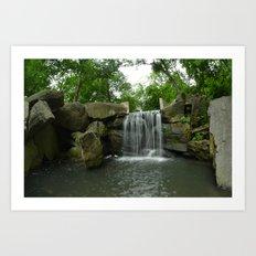 Central Park Waterfall Art Print