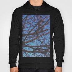 Different Paths Hoody