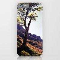 iPhone & iPod Case featuring tree side. by zenitt