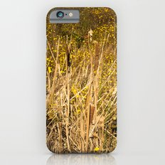 Cattails iPhone 6 Slim Case