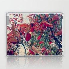Colours of nature Laptop & iPad Skin