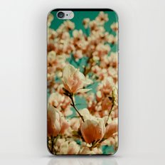 A Day of Loveliness iPhone & iPod Skin