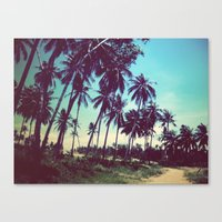 Road of palm trees Canvas Print