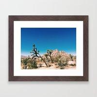 Joshua II Framed Art Print