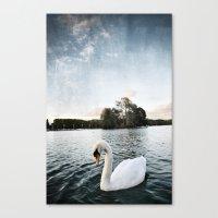 Le Lac Des Cygnes Canvas Print