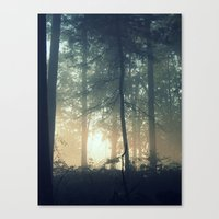 Find Serenity Canvas Print