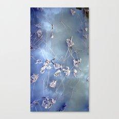 winter lotus Canvas Print