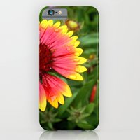 iPhone & iPod Case featuring Summer Colours by BreatheinStandstill