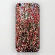 Red Berries iPhone & iPod Skin