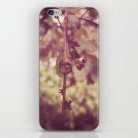 ... iPhone & iPod Skin