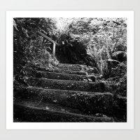 The Woodland Stair Art Print