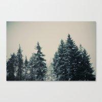 Winter Fancy Canvas Print