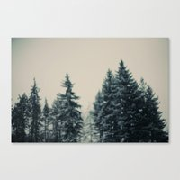Winter Fancy Canvas Print