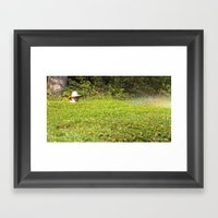 Hong Kong Gardener Framed Art Print