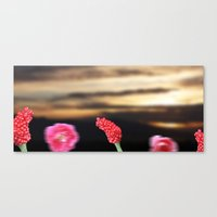 Surreal Sunrise Canvas Print