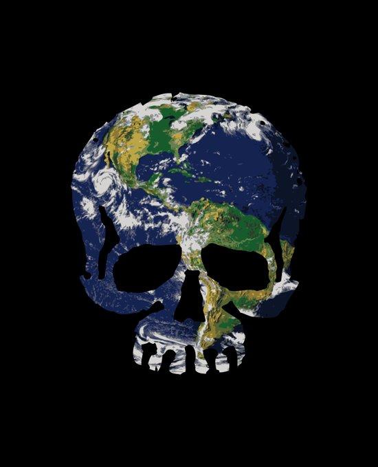 Skull Earth Canvas Print