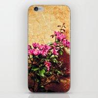 Pink Flowers Against Wea… iPhone & iPod Skin