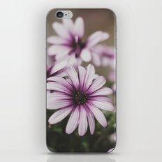 LILAC. iPhone & iPod Skin