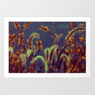Art Print featuring Autumn Grassflower In Co… by Die Farbenfluesterin