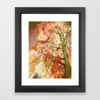 Majestic Tree Framed Art Print