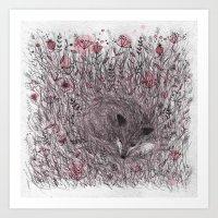 Sleeping fox Art Print