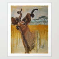 Greater Kudu (Tragelaphu… Art Print