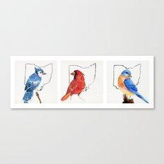 Birds of Ohio Canvas Print